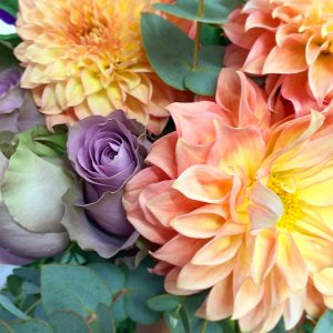 a close up picture of peach dahlias, purple rose and eucalyptus