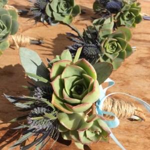 Succulent Buttonholes- A Touch of Class Florist
