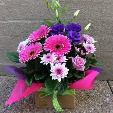 a pink and purple box arrangement featuring gerberas.