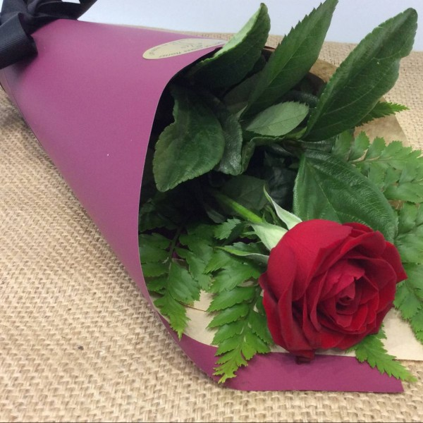 single red rose wrapped in brown and burgundy paper