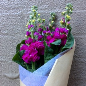 Posy of the Day- A Touch of Class Florist