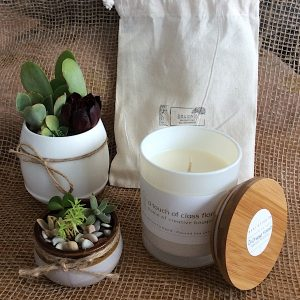 a bear and finn driftwood coconut scented candle in a white glass pot with bamboo lid. pictured with two succulent pots.