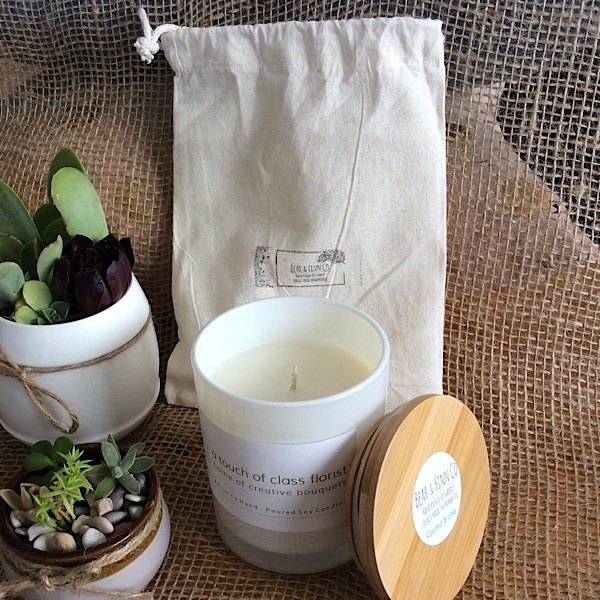 a bear and finn coconut and lime scented candle in a white glass pot with bamboo lid. pictured with two succulent pots.