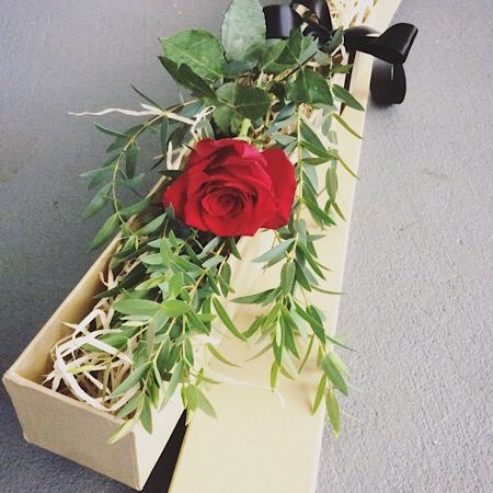 A single red rose in a Presentation Box