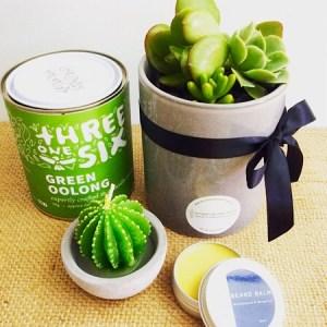 A quirky hamper including a Threesixone tea, a Possom and Blossum beard balm, a succulent pot and a small cactus candle