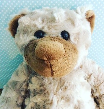 Puddles The Bear - soft grey bear with a brown nose - A Touch of Class Florist